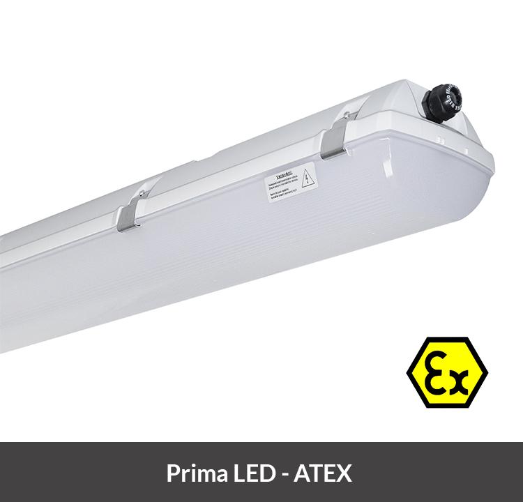 Prima LED atex4-min