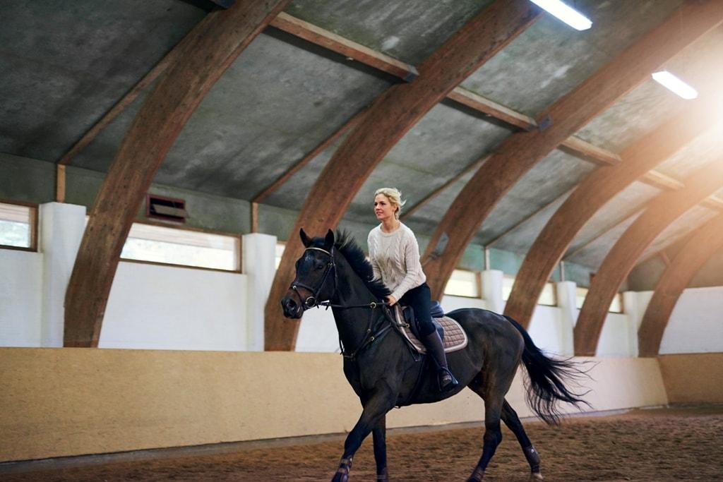 Paardenstal verlichting